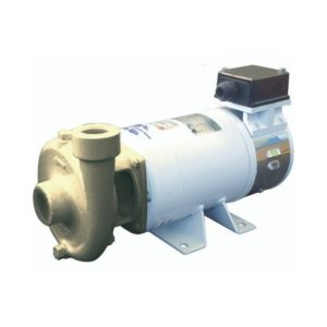 elettropompe-centrifughe-in-bronzo-b-ce-b-cn1