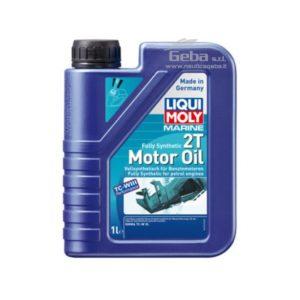 Marine fully synthetic 2T motor oil per fuoribordo a 2 tempi