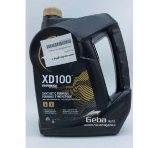 Olio per motore fuoribordo Evinrude XD100